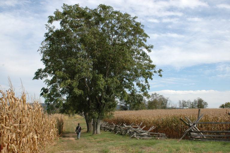 Joe Dobrow photo of Antietam 150th anniversary