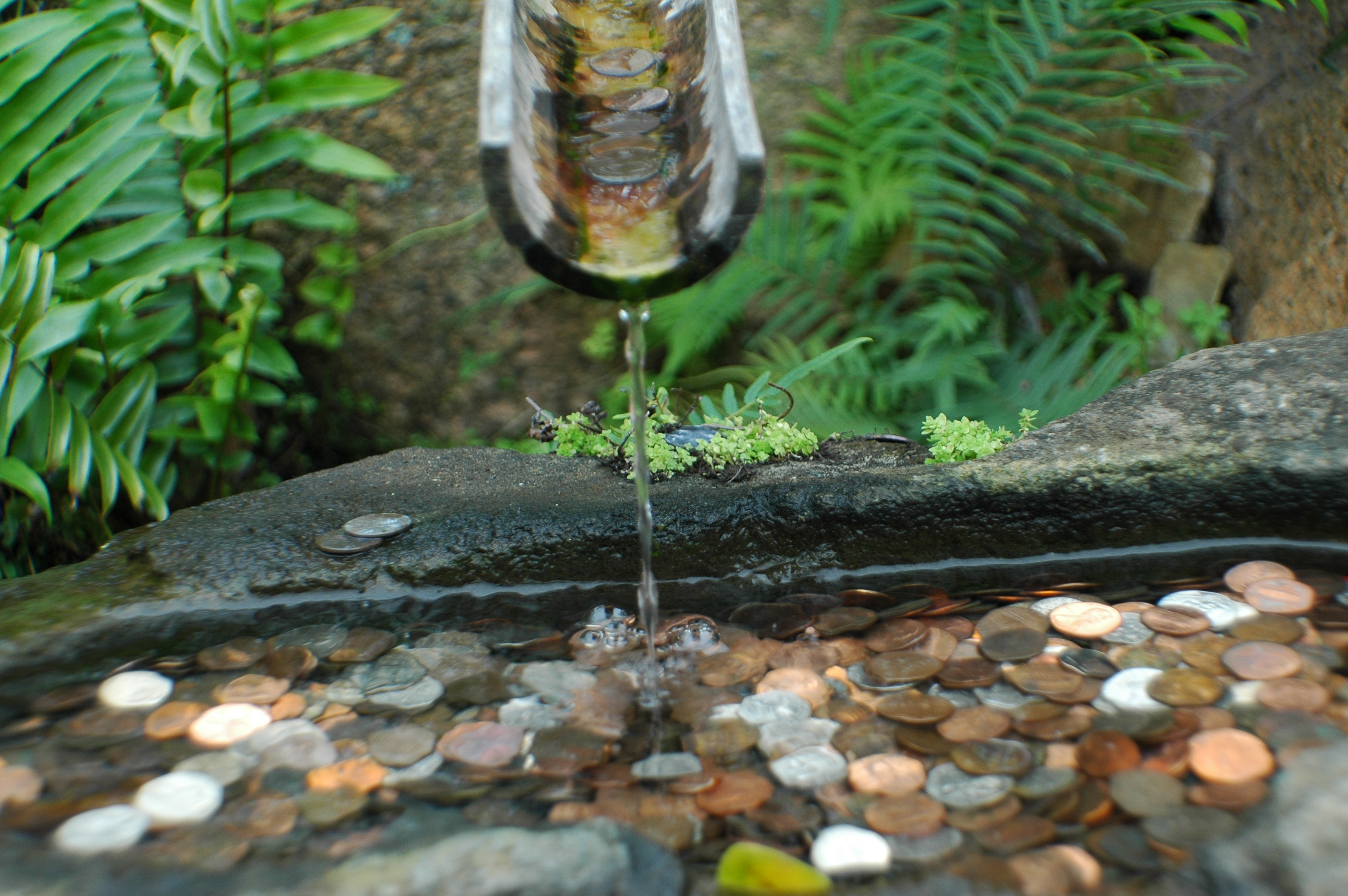 Joe Dobrow photo of coins in a fountain
